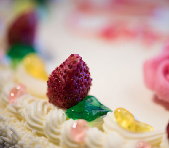torta-chantilly-fragoline-pasticceriabellavia